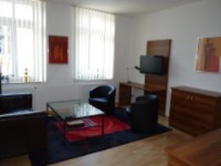Vacation Apartment in Oelsnitz - central, quiet (# 8503) - Unterwürschnitz vacation rentals