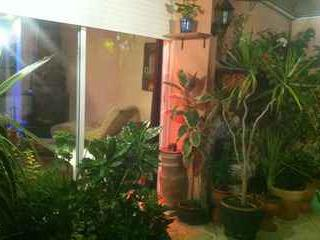 Bel appartement - Casablanca vacation rentals