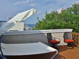 3 Bedroom Condo With Roof Top Deck &  Beach Views - Virginia Beach vacation rentals
