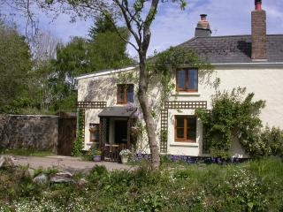 Sticklepath, Dartmoor.  Ideal for riders, walkers - Sticklepath vacation rentals