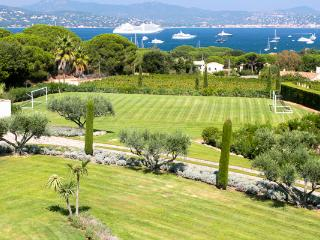 Huge St. Tropez villa, perfect for weddings. ACV HAP - Chateaudouble vacation rentals