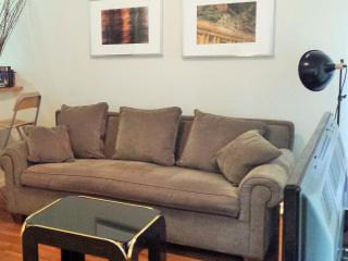 LARGE APARTMENT IN TIMES SQUARE- GREAT FOR GROUPS - Manhattan vacation rentals