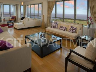 ENTIRE 43RD FLOOR MASTERPIECE 4 BDR/4BATH (JG4) - Buenos Aires vacation rentals
