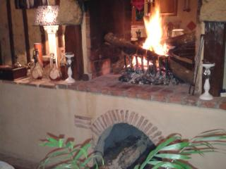 Maison et table d'Hôtes Le Chai d'Armagnac - Gers vacation rentals