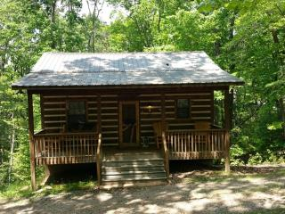 Sweet Retreat Cabin - Helen, GA - Sautee Nacoochee vacation rentals