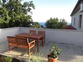 35013  Aster1(2+2) - Rijeka - Rijeka vacation rentals