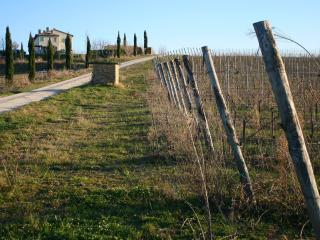 Tenuta Recchi Franceschini - Montalto delle Marche vacation rentals