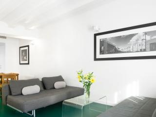 Raval Apartment 3 bedroom - city center - Barcelona vacation rentals