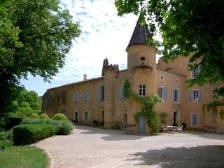 Le Chateau de Peintre, Spectacular Chateau in Provence, outside Uzès with own Private Lake, and Pool - Garrigues-Sainte-Eulalie vacation rentals