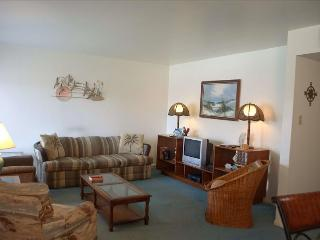 SURFSIDE CONDOMINIUMS UNIT 222 - Corpus Christi vacation rentals