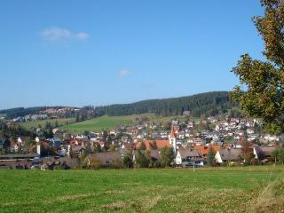 Vacation Apartment in Schonach im Schwarzwald - 1 bedroom, max. 4 people (# 6871) - Schonach vacation rentals