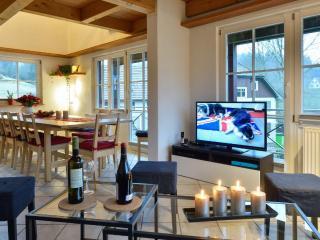 Black Forest house Enzklösterle - Enzklösterle vacation rentals