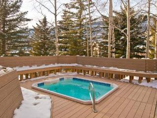 Streamside Condo in Vail - sleeps 6 - Vail vacation rentals