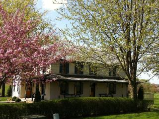 1750's Sandstone Farmhouse * POOL * screened porch - Lancaster vacation rentals