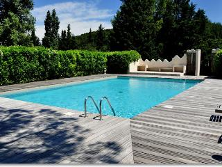 Charming apartment with terrace, garden and pool - Vaison-la-Romaine vacation rentals