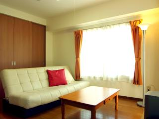 Spacious 2BR apartment close to JR train Station. - Tokyo vacation rentals