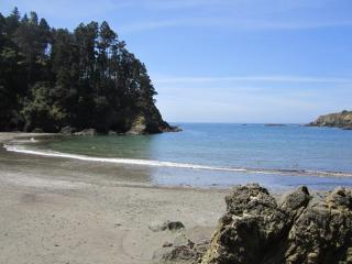 Mendocino, Sea Views, Stroll to State Park, Beach - Mendocino vacation rentals