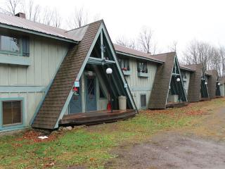 Schwiebl Haus - Ironwood vacation rentals