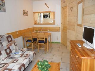 CHAMONIX TOWN CENTER 2 rooms Mont Blanc view - Chamonix vacation rentals