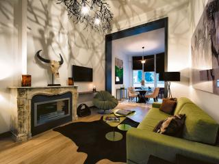 BRAND NEW Gorgeous Apartment located at Av Louise - Ixelles vacation rentals