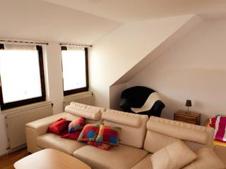 Vacation Apartment in Krems an der Donau - bright, comfortable, active (# 8511) - Loosdorf vacation rentals
