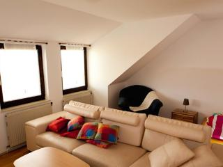 Vacation Apartment in Krems an der Donau - bright, comfortable, active (# 8512) - Loosdorf vacation rentals
