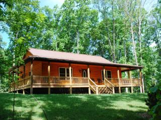 Brand New Construction:  The Barred Owl Lodge! - Syria vacation rentals