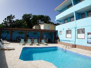 Vista del Mar Estate - Rincon vacation rentals