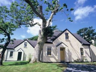 Clifden Cottages - 3 Bed (Type B) : Clifden, Galway - Clifden vacation rentals
