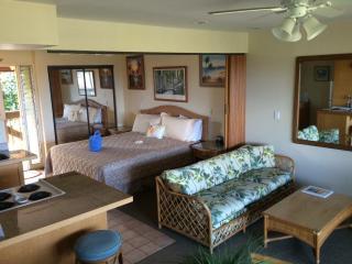 Napili Village - Lahaina Vacation Condo Rental - Lahaina vacation rentals