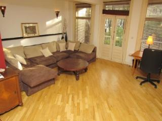 540 Cozy Apartment in Pijp Area Close to the City - North Holland vacation rentals