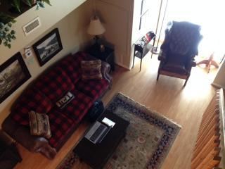 Mountain Inn Retreat - Wintergreen vacation rentals