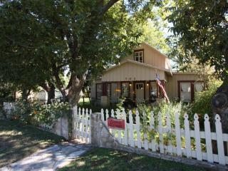 Cosmos Cottage - Fredericksburg vacation rentals