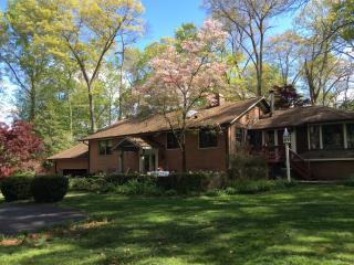 Rustic Retreat near Tyson's, Reston, No. Virginia - Tempe vacation rentals
