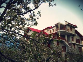 Bharhka Heights - Manali vacation rentals