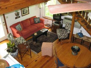 Blue Water Lodge, Beaver Lake Front Cabin, Boat Dock, Large Decks - Eureka Springs vacation rentals