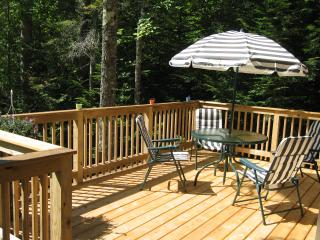 Maine Northwoods Log Cabin - Greenville vacation rentals