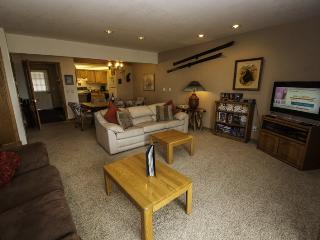 Snowdance Condominiums B102 - Walk to slopes, updated bathrooms and kitchen, Mountain House! - Keystone vacation rentals