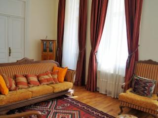 Exclusive Apt in city center - Baku vacation rentals