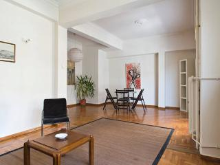 SPACIOUS APARTMENT-HEART OF ATHENS - Athens vacation rentals