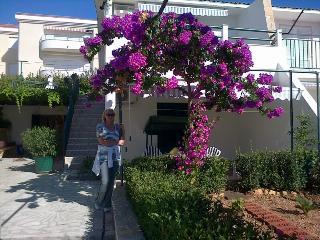 APARTMANTS ANDREA - Seget Vranjica vacation rentals