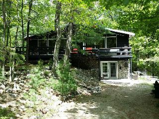 Doorian Gray cottage (#597) - Midland/Penetanguishene vacation rentals