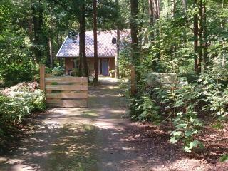 Logeerkamer in boshuis - Norg vacation rentals