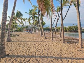 Kolea DIRECT BEACH ACCESS  Best Value  2/2 - Waikoloa vacation rentals
