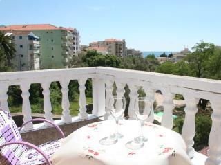 2 Bedroom flat, Montenegro Budva, Becici - Becici vacation rentals