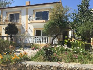 Olive tree mews - Kyrenia vacation rentals
