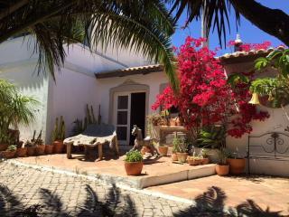 Casa Eiras Altas, sublime mountain view property - Tavira vacation rentals