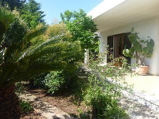 Villa Anna (Holiday House in Salento - Italy) - Tiggiano vacation rentals