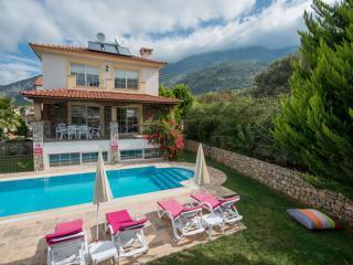 DİSCOUNT!! Holiday Villa For Rent in Ovacik - Ovacik vacation rentals