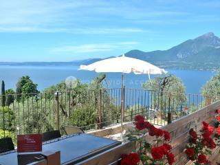 Villa Gialla - Torri del Benaco vacation rentals
